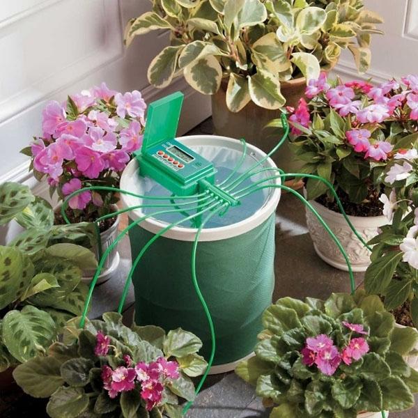 Автолейка - cистема автополива растений